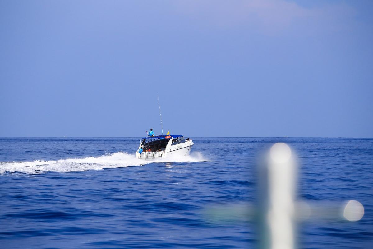 ทัวร์ดำน้ำหมู่เกาะสิมิลัน <Speed Boat>  (1Day)