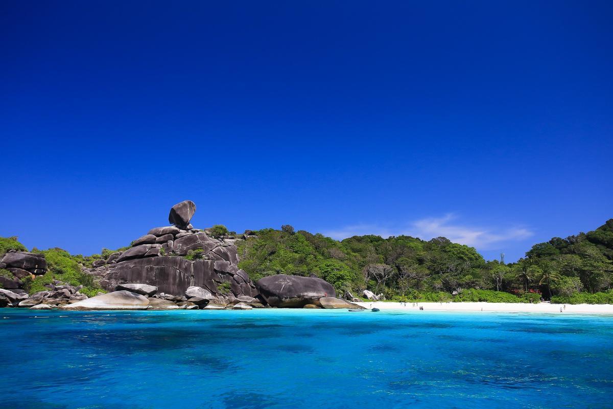 Snorkeling Similan Island <Speed boat>  (1 Day)