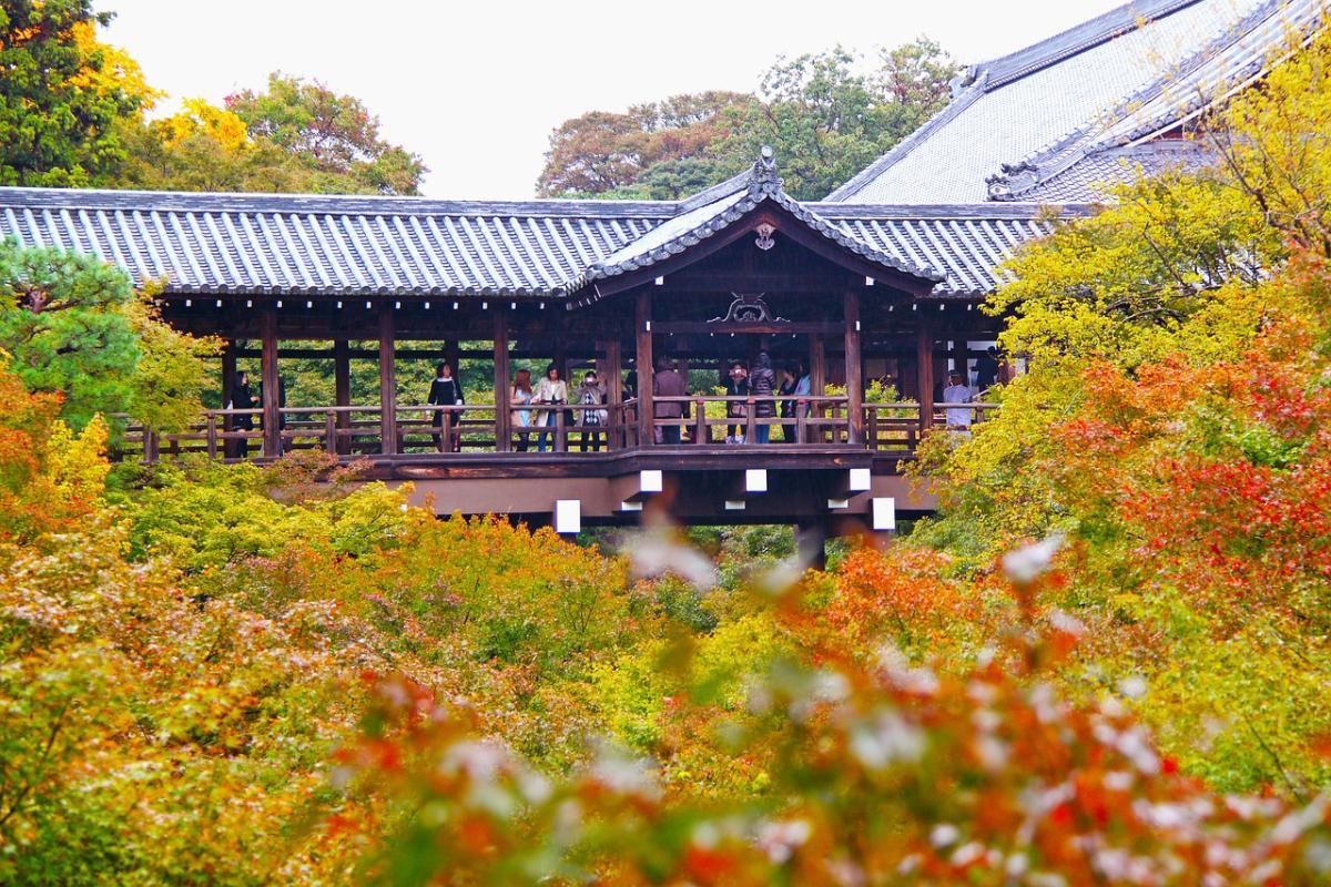 เยี่ยมชม 7 จุด ชมใบไม้เปลี่ยนสีที่เกียวโต  (One Day Trip)