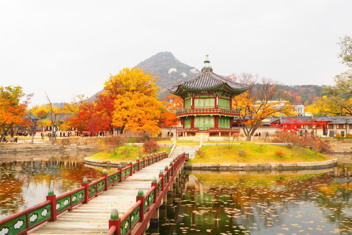 เกาหลี โซล แทอัน [เลทส์โก ทิวลิปล้นทุ่ง] 5 วัน 3 คืน