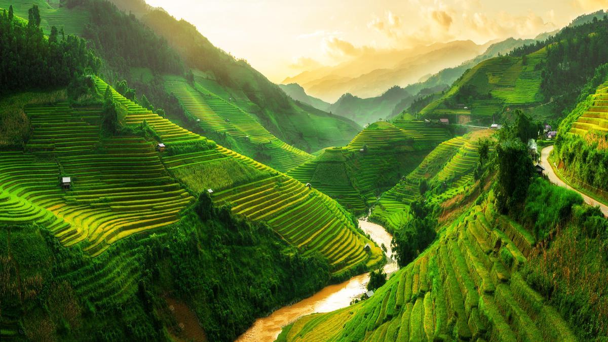 เวียดนามเหนือ-ฮานอย-ซาปา-ฟานซีปัน-ฮาลอง-นิงห์บิงห์-จ่างอาน 4 วัน 3 คืน(TG)