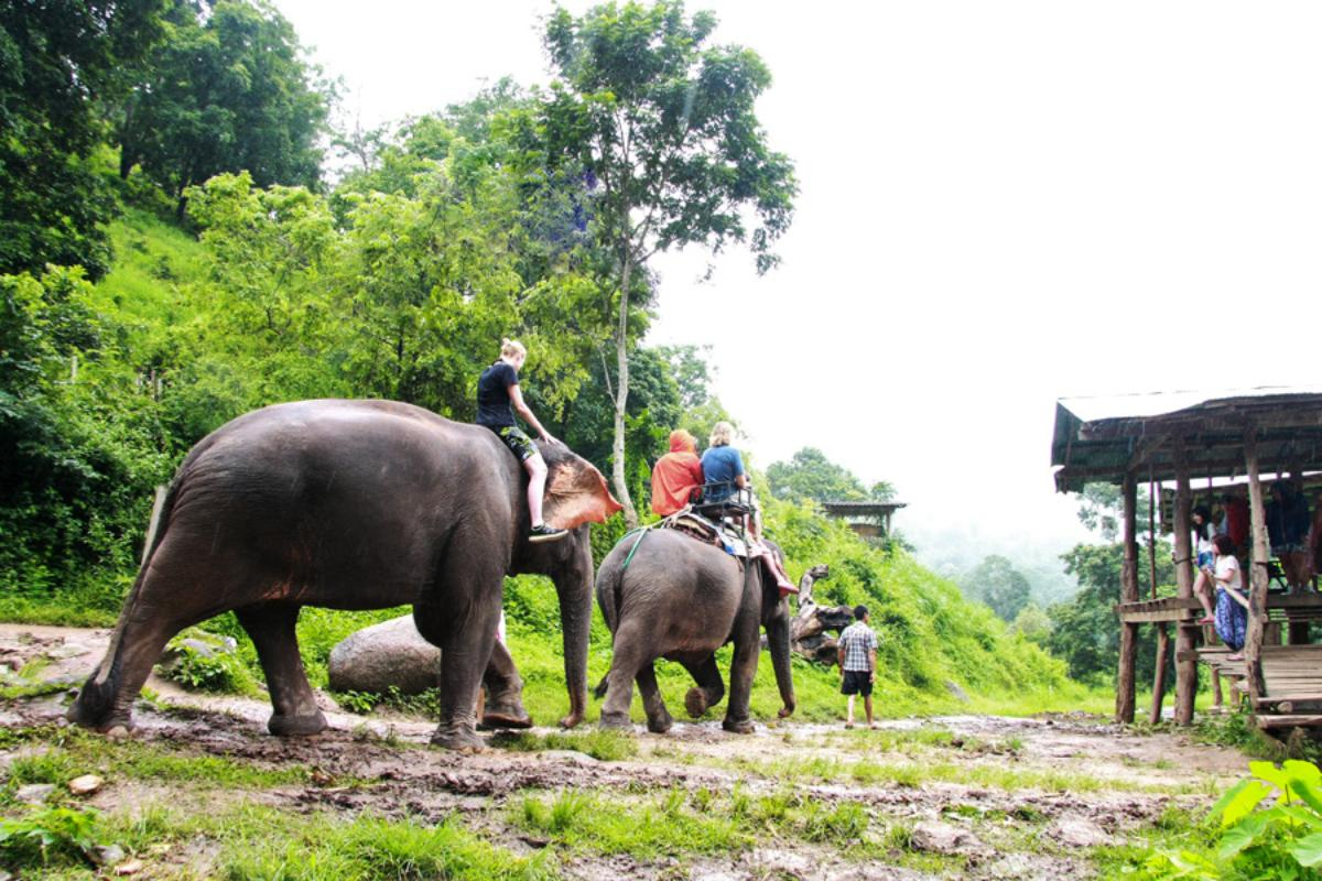 Elephant Care + ATV 1 hrs + White Water Rafting 10 km  (fullday)