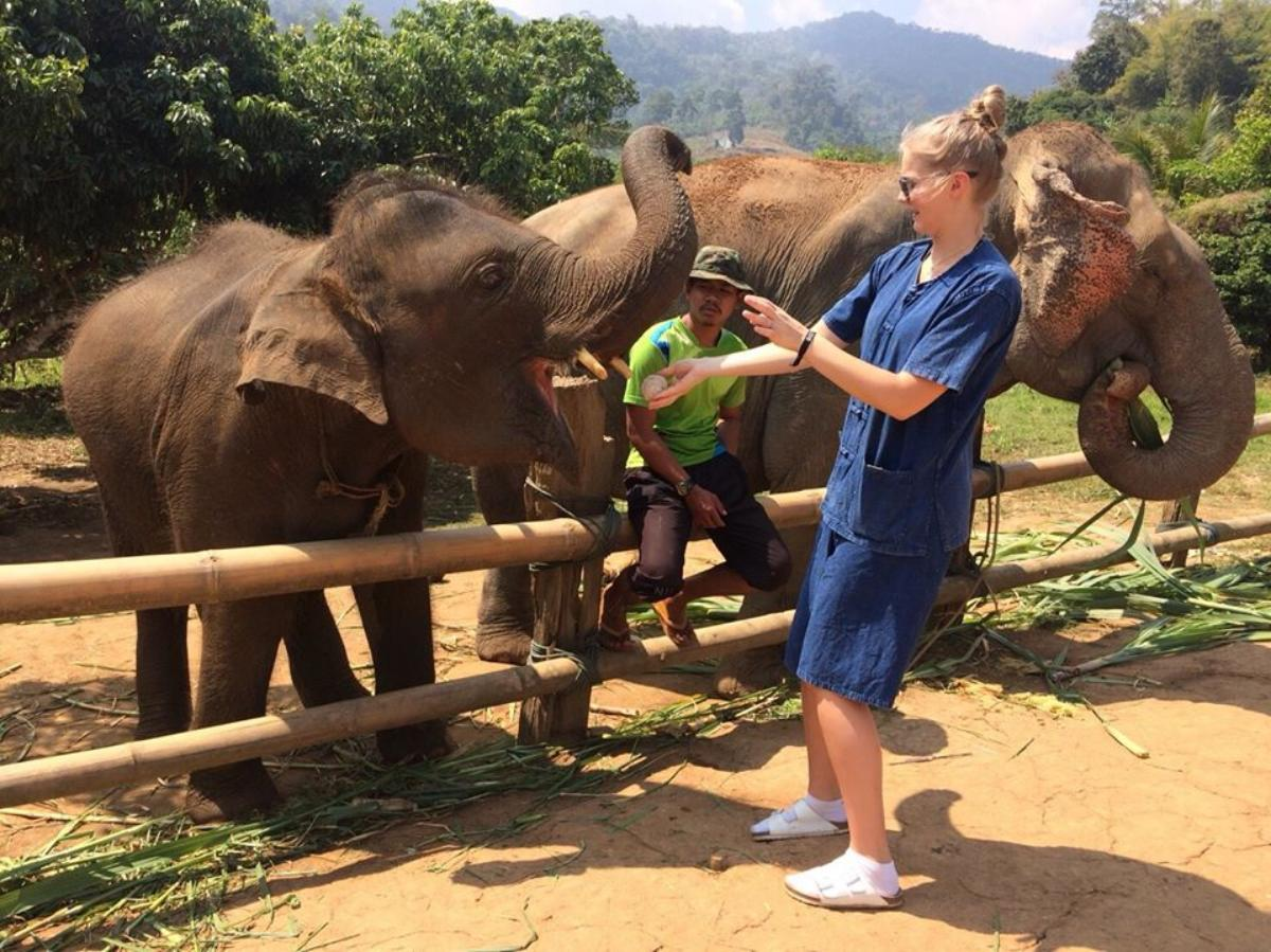 Eco Elephant Care  (Full day&Half day)