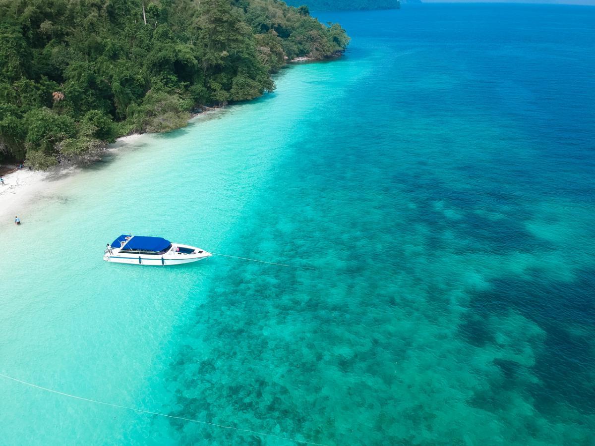 """ดำน้ำ """"เกาะนาวโอพี"""" + Seafood Lunch (One day trip)"""