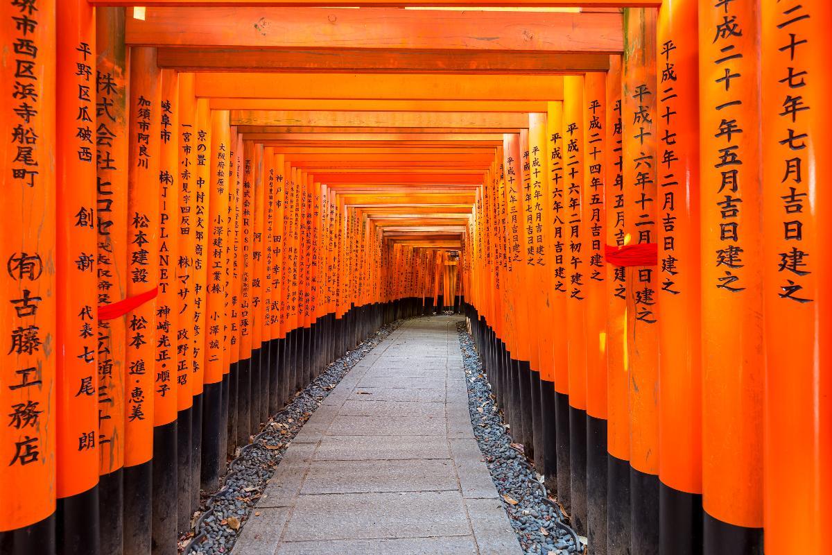 แพ็คเกจท่องเที่ยวเกียวโต 1 วัน (จากเกียวโต / ออกเดินทางที่ 1 ท่าน)