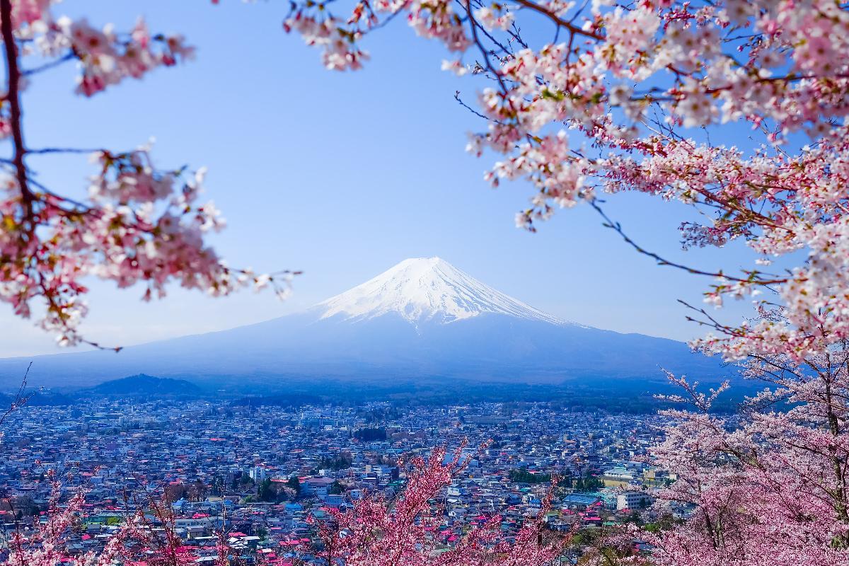 เที่ยวรอบภูเขาไฟฟูจิ & ชมซากุระ หมู่บ้านโอชิโนะฮักไก - ทะเลสาบคาวากุจิ - สวนอาราคุระยามะเซ็นเก็น One Day Trip